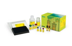 Bio-Plex Pro™ RBM Apoptosis Multiplex Assays image cover