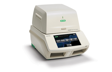 CFX384 Touch™ Real-Time PCR Detection System image cover