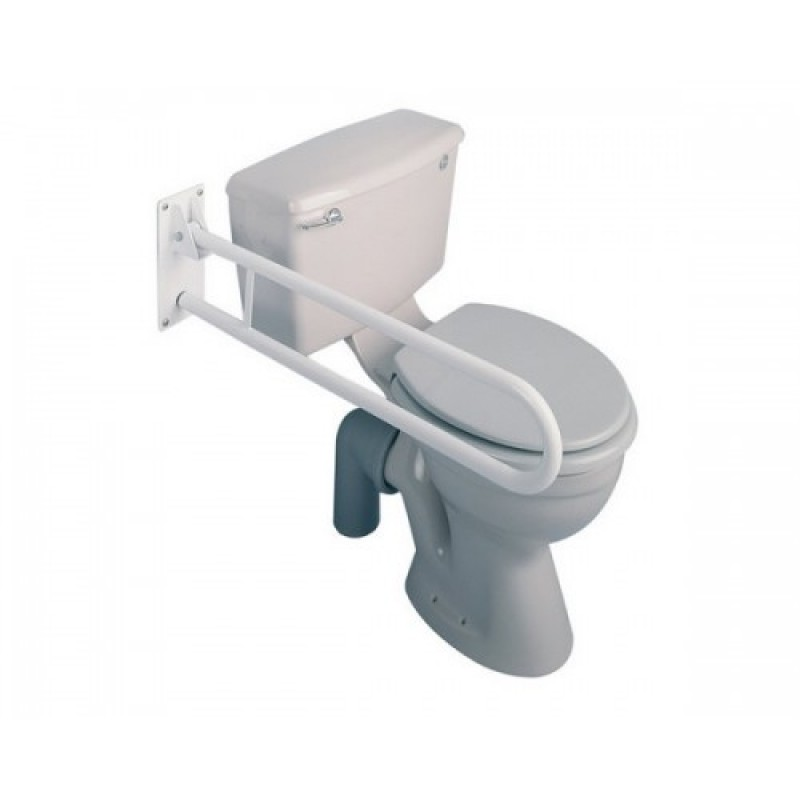 Trombone Fold Away Grab Rail image cover