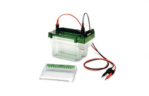 Vertical Nucleic Acid Electrophoresis Systems image cover