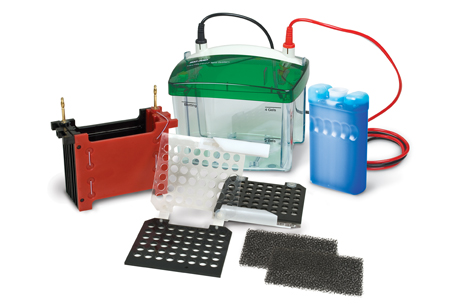 Mini Trans-Blot® Cell image cover