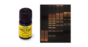 Nucleic Acid Stains and Tracking Dyes image cover